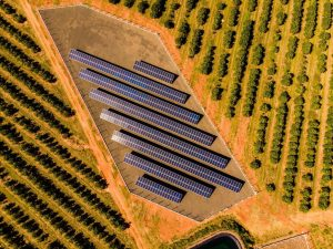 usina-solar-pamiro-fotovoltaica-itajobi-araraquara-matao-sao-carlos-nexti-engenharia-1