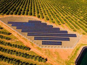 usina-solar-pamiro-fotovoltaica-itajobi-araraquara-matao-sao-carlos-nexti-engenharia-2.jpg