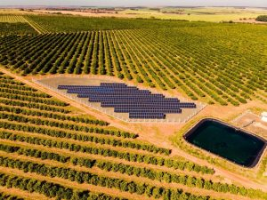 usina-solar-pamiro-fotovoltaica-itajobi-araraquara-matao-sao-carlos-nexti-engenharia-4